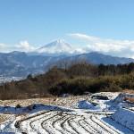 段々畑から富士山を見る