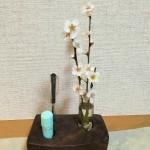 いっぴん工房の印鑑スタンドと梅の花