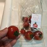 トマトはシミに効く美白の食べ物