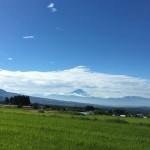 今朝の富士山とおかひじきのナムル