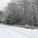 またこんなに雪が降ってる!