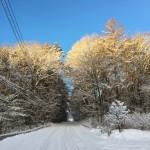 泉ラインから上は雪国