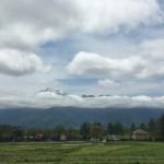 今朝の散歩は三分一湧水館の南の方 富士山南アルプス一望