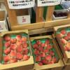 白根インター近くのJAの直売所のはねだしの桃が美味しくて超安い!