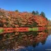 今日11月1日の軽井沢雲場池の紅葉