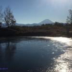 小さな池の向こうの富士山
