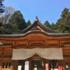 金運神社で有名な穂高神社で参拝して温泉とお蕎麦