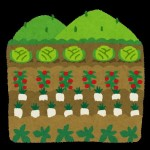 畑を借りたいなら北杜市農業振興公社で