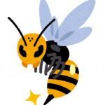 猛暑は蜂が多い?