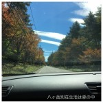 紅葉が始まってる原村鉢巻道路