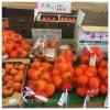 富有柿はどこぉ~?
