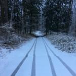 雪はここだけだった
