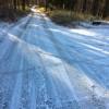 朝起きたらちょっとだけ雪が積もっていた