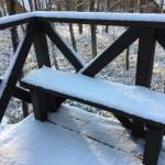 朝起きたら一面の雪