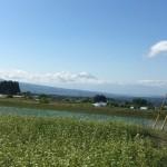 富士山の雪が増えた?