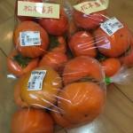 今年は松本富有柿が美味しい