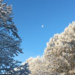 やっぱり標高が1000メートル超えると雪が積もる