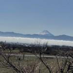富士山の雪増えた?