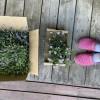 たてしな自由農園原村店でお花の苗買った