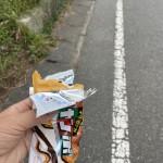 念願のアイスクリームを買い食いしながらのお散歩