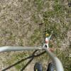 立ち作業用草刈ハサミ