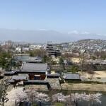 松本城の桜2021年3月31日