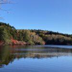 白駒池の紅葉2012年10月11日ちょっと遅かった