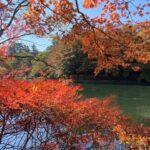 軽井沢の雲場池の紅葉